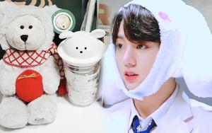 Fan Kpop đang ráo riết mua cốc Starbucks chó trắng siêu cute, lý do là gì?