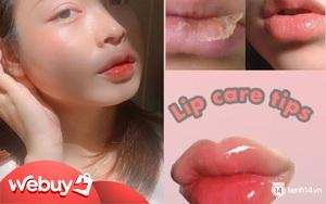 6 sản phẩm dưỡng môi căng hồng beauty blogger Việt khuyên dùng, hóng ngay nếu bạn muốn đánh son lì cỡ nào cũng đẹp