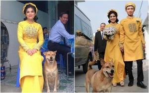 Đám cưới rộn ràng khắp MXH nhờ sự xuất hiện của... một chú chó, biểu cảm vui như Tết khiến ai cũng phải bật cười