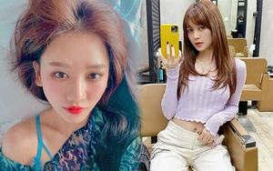 6 salon tóc sao Việt vừa check-in: Xem để biết Hari Won uốn phồng ở đâu, Hòa Minzy nhuộm xanh ở tiệm nào