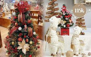 Sắm cây thông giả cho Noel: Hơn trăm nghìn hay tiền triệu đều có, loại nào cũng siêu đẹp
