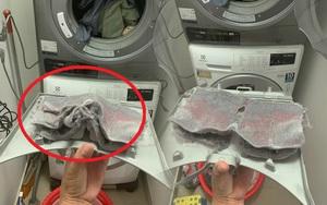 Xem xong bức ảnh rùng mình này mới thấy sắm máy sấy quần áo cần thiết thế nào