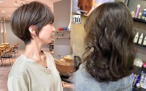 Các salon tóc