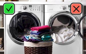 Máy giặt kiêm sấy nghe thì tiện đấy nhưng Dino Vũ khuyên bạn nên mua hai thứ riêng biệt vì lý do này đây