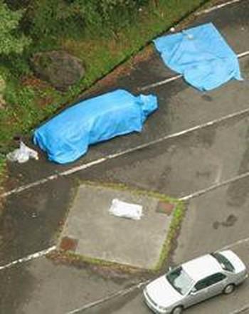 Tự tử bằng khí độc Carbon Monoxide: Vấn nạn của đất nước Nhật Bản đã lan ra cả thế giới - Ảnh 1.