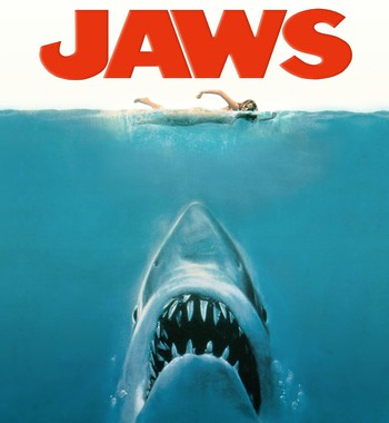 Tại sao cá mập luôn là nỗi khiếp sợ, dù chúng ta giết tới hàng triệu con mỗi năm? - Ảnh 2.