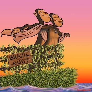"""Tranh cãi: loài khỉ đã """"đi bè"""" cưỡi sóng, vượt đại dương trước con người hàng triệu năm? - Ảnh 4."""