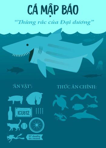 Hỏi khó: Từ lâu chúng ta đã lặn biển cùng cá mập, nhưng với... cá sấu thì sao? - Ảnh 2.