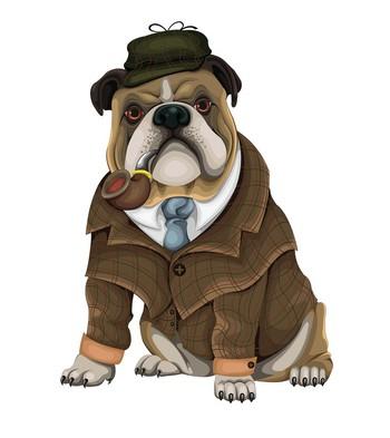 Phát hiện 1 khả năng đặc biệt của loài chó - thoáng qua cũng biết ai là người xấu, người tốt - Ảnh 2.