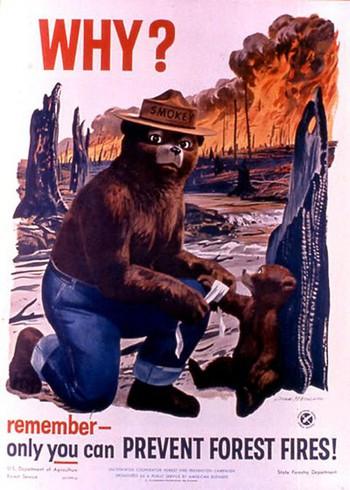 Vì sao cháy rừng ngày càng cuồng bạo? Là vì một quả bom nổ chậm nhân loại vô tình tạo ra sau hàng thập kỷ chống lại giặc lửa - Ảnh 3.