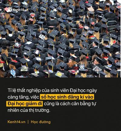 Hơn 270.000 học sinh lớp 12 không thi Đại học: Bằng ĐH hiện nay quá đắt đỏ và không đáng tiền bỏ ra? - Ảnh 1.