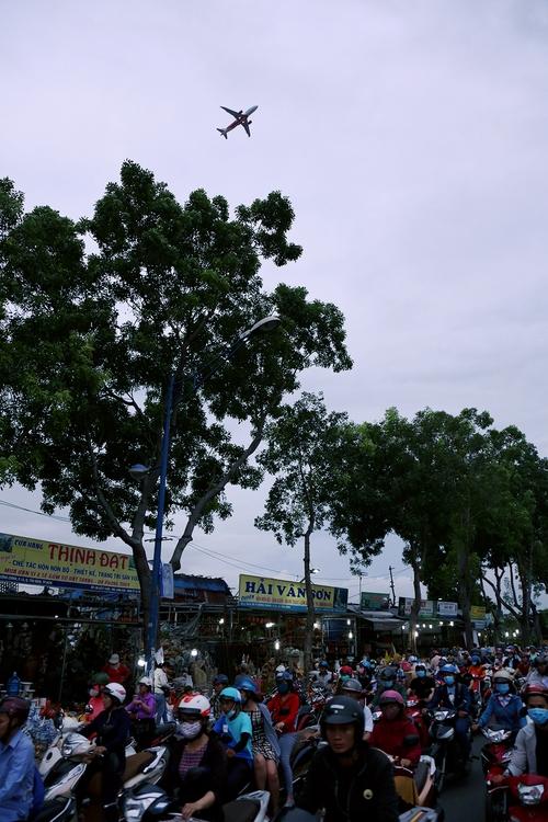 Hàng chục gian hàng gần sân bay Tân Sơn Nhất ồ ạt thanh lý chó, gà, cây cảnh, giao thông Sài Gòn hỗn loạn - Ảnh 9.
