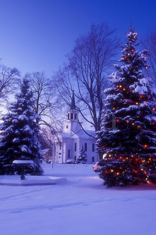Những ngôi nhà trang hoàng lộng lẫy đón Noel đẹp đến mê mẩn giữa tuyết trắng - Ảnh 12.