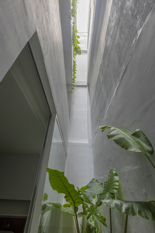 Cải tạo nhà 40 năm tuổi: Mở tận 3 giếng trời, ấn tượng nhất là cầu thang màu đỏ không đụng hàng - Ảnh 7.