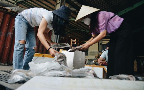 Người Sài Gòn được tiếp sức 3 tấn cá biển đầu tiên từ bà con Quảng Bình