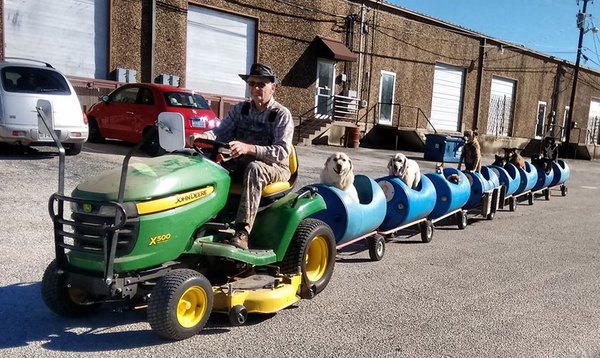 rescued-dog-train-tractor-stray-eugene-bostick-7-69305