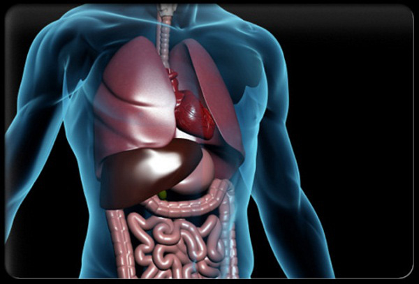 Phản ứng cơ thể khi nuốt kẹo cao su, nylon 5