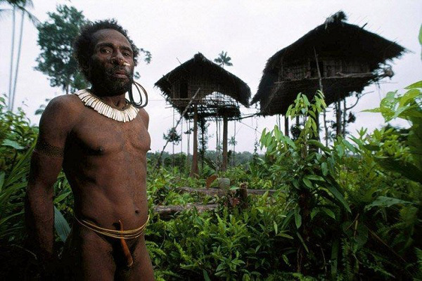 Bộ tộc sống trên cây duy nhất ở Trái đất 11