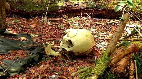 Giải mã bí ẩn lạnh gáy trong khu rừng tự sát 7