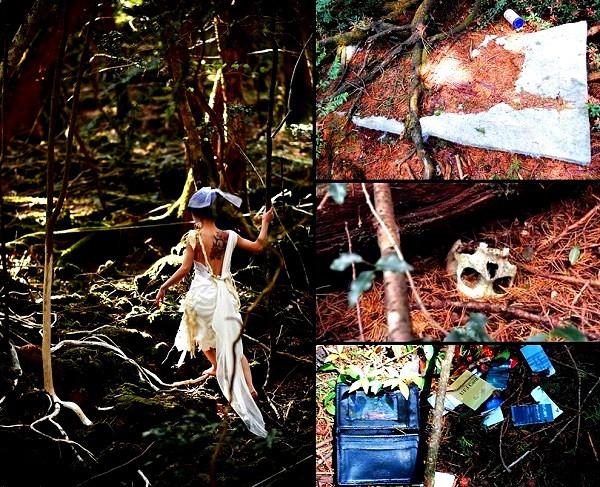 Giải mã bí ẩn lạnh gáy trong khu rừng tự sát 8