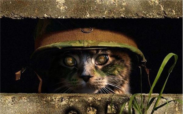 Những Chiến thuật quân sự đỉnh cao trong các cuộc chiến tranh