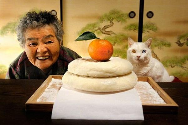 Bộ ảnh cảm động của cụ bà sống hạnh phúc cùng mèo   7