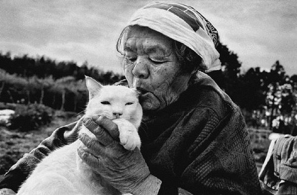 Bộ ảnh cảm động của cụ bà sống hạnh phúc cùng mèo   8