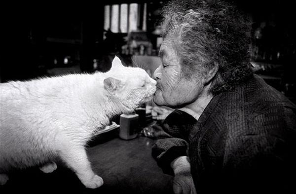 Bộ ảnh cảm động của cụ bà sống hạnh phúc cùng mèo   9