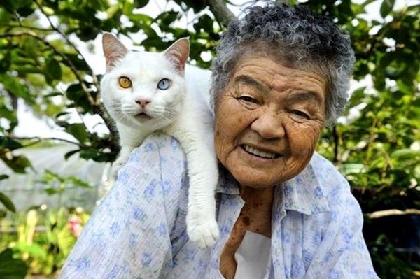 Bộ ảnh cảm động của cụ bà sống hạnh phúc cùng mèo   12