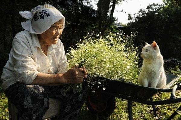 Bộ ảnh cảm động của cụ bà sống hạnh phúc cùng mèo   13