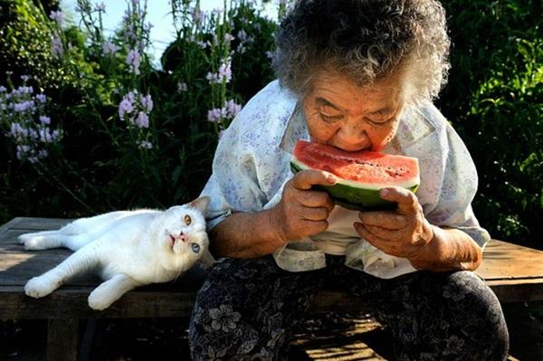 Bộ ảnh cảm động của cụ bà sống hạnh phúc cùng mèo   18