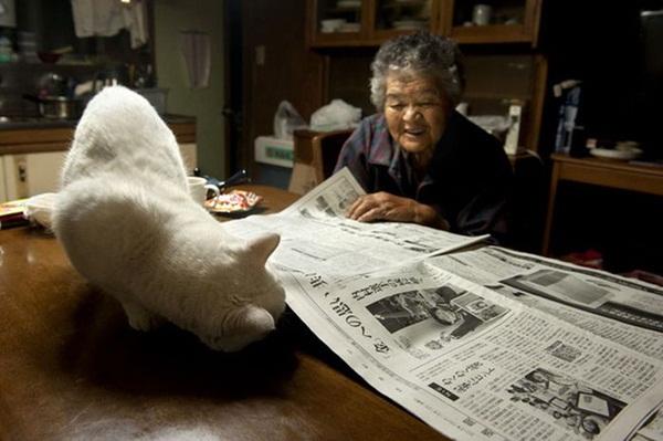 Bộ ảnh cảm động của cụ bà sống hạnh phúc cùng mèo   19
