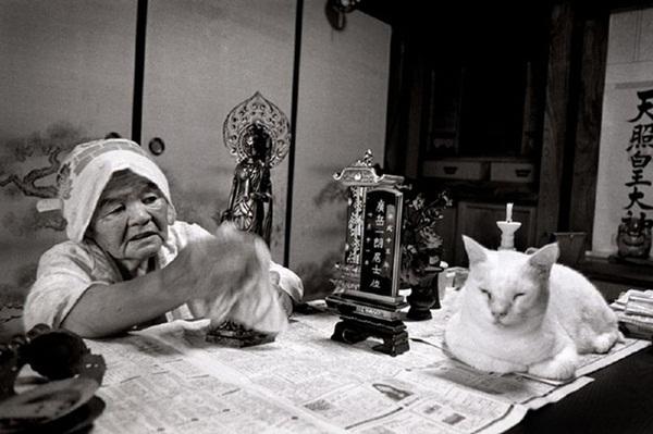 Bộ ảnh cảm động của cụ bà sống hạnh phúc cùng mèo   20