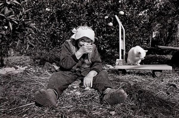 Bộ ảnh cảm động của cụ bà sống hạnh phúc cùng mèo   21