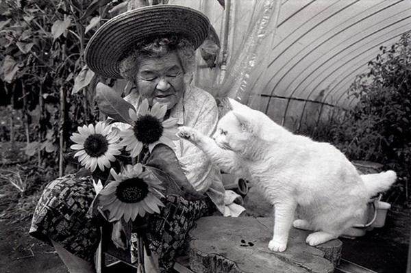 Bộ ảnh cảm động của cụ bà sống hạnh phúc cùng mèo   24