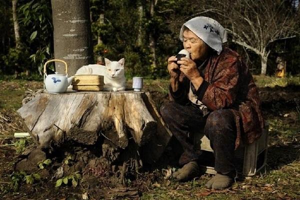 Bộ ảnh cảm động của cụ bà sống hạnh phúc cùng mèo   3
