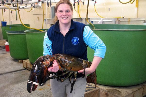Loài cá nước ngọt mang họ của Tổng thống Obama 3