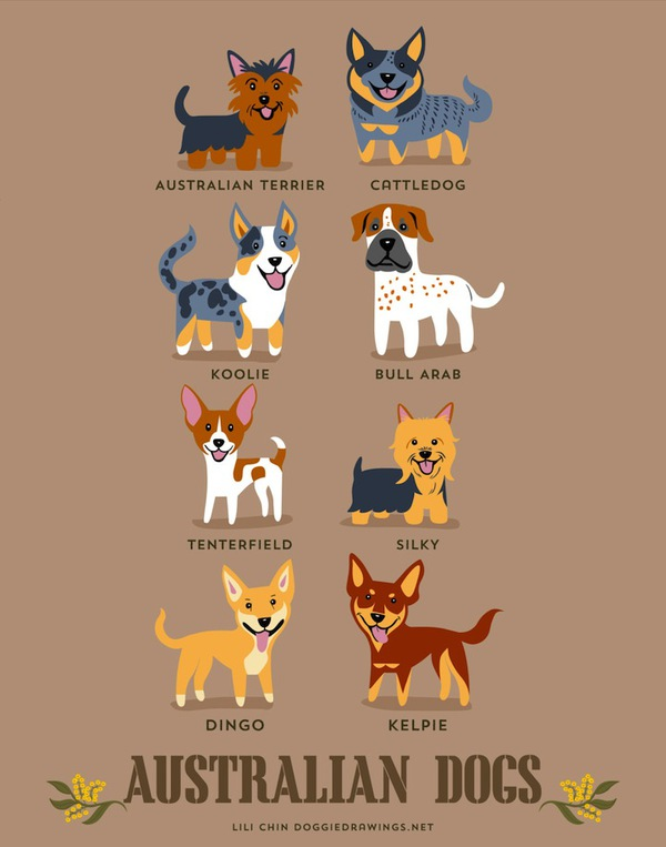 doggiedrawings1-f01a8.jpg