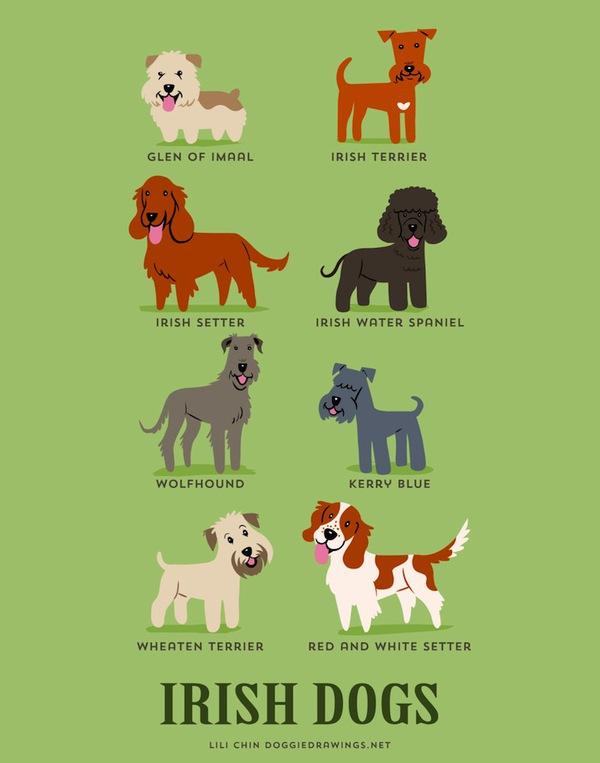 doggiedrawings10-f01a8.jpg