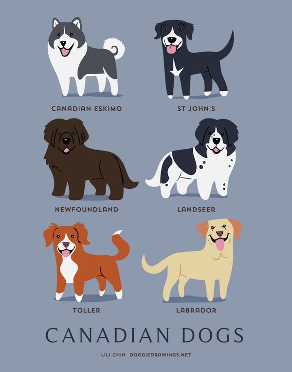 doggiedrawings2-f01a8.jpg