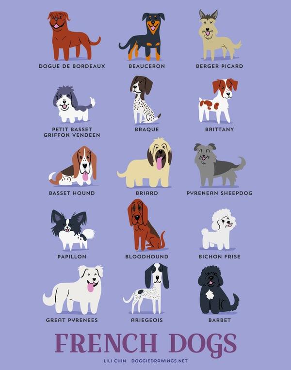 doggiedrawings4-f01a8.jpg