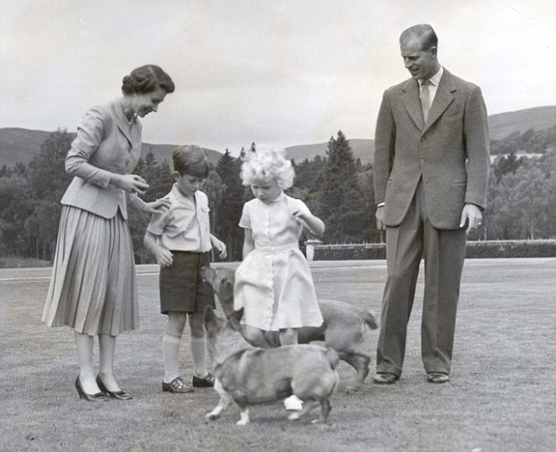 Câu chuyện đáng yêu về tiểu đội vệ binh toàn chó Corgi của Nữ hoàng Anh - Ảnh 7.