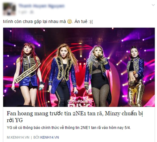 Cộng đồng mạng Việt tiếc nuối, mổ xẻ việc Minzy rời 2NE1 - Ảnh 2.