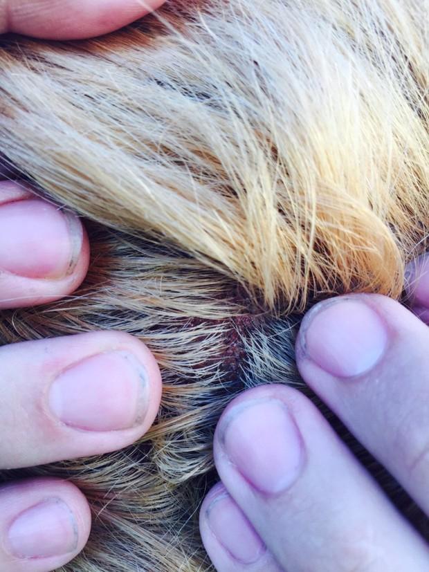 Mốt tẩy tóc và những tai nạn kinh hoàng - Ảnh 12.