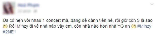 Cộng đồng mạng Việt tiếc nuối, mổ xẻ việc Minzy rời 2NE1 - Ảnh 3.