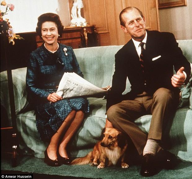 Câu chuyện đáng yêu về tiểu đội vệ binh toàn chó Corgi của Nữ hoàng Anh - Ảnh 11.