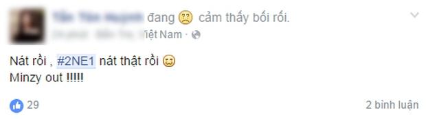 Cộng đồng mạng Việt tiếc nuối, mổ xẻ việc Minzy rời 2NE1 - Ảnh 6.