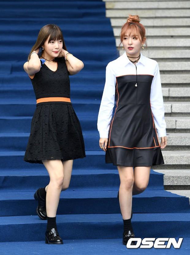 Min khoe đụng độ Red Velvet, SISTAR và Key (SHINee) khi dự show tại Tuần lễ thời trang Seoul - Ảnh 12.