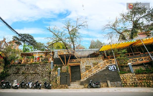 Những điều thú vị ở An - Quán cafe nằm giữa 5 cây mai anh đào cổ thụ tại Đà Lạt - Ảnh 1.
