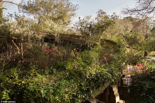 Hình ảnh ghê rợn bên trong công viên nước bỏ hoang 15 năm của Disney - Ảnh 1.